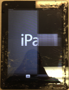 LCD Damaged iPad
